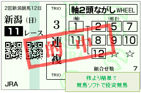 20170903_新潟11R