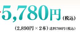 グローリンワンクロス 価格2