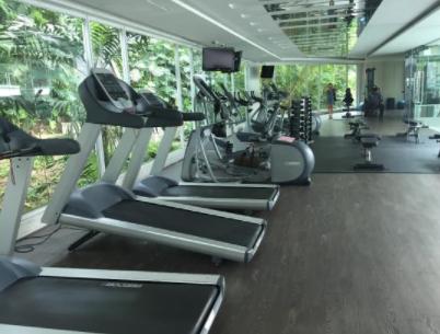 damas gym
