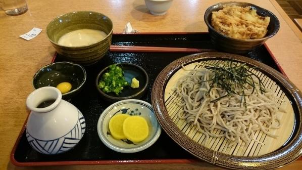 道の駅掛川(7)