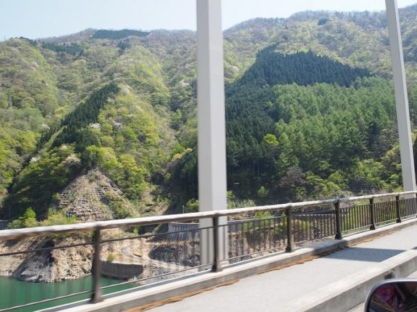 大滝(14)