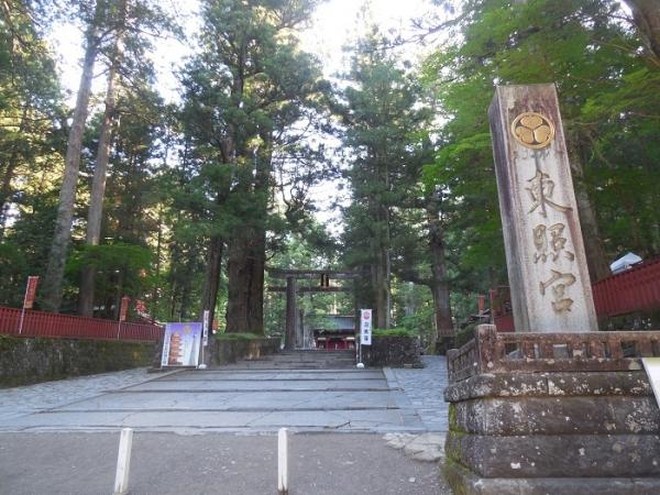 東照宮参道(9)