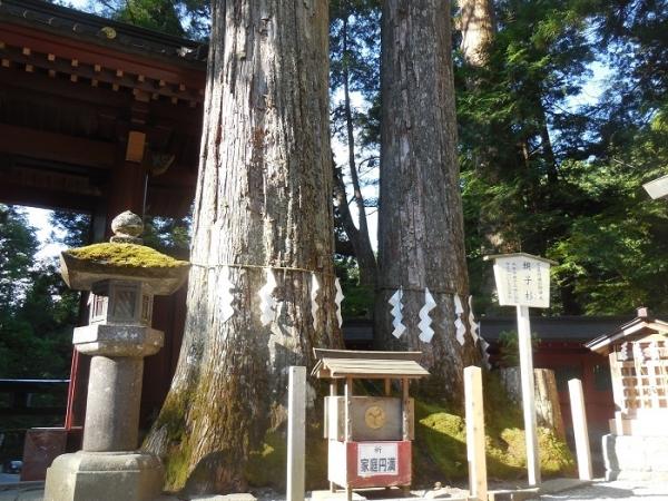 二荒山神社(6)