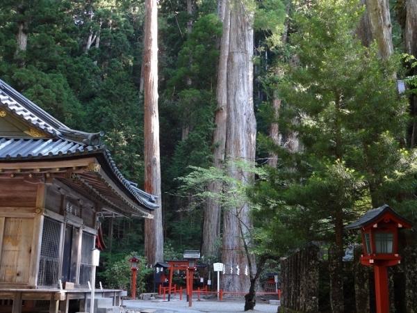 二荒山神社(10)
