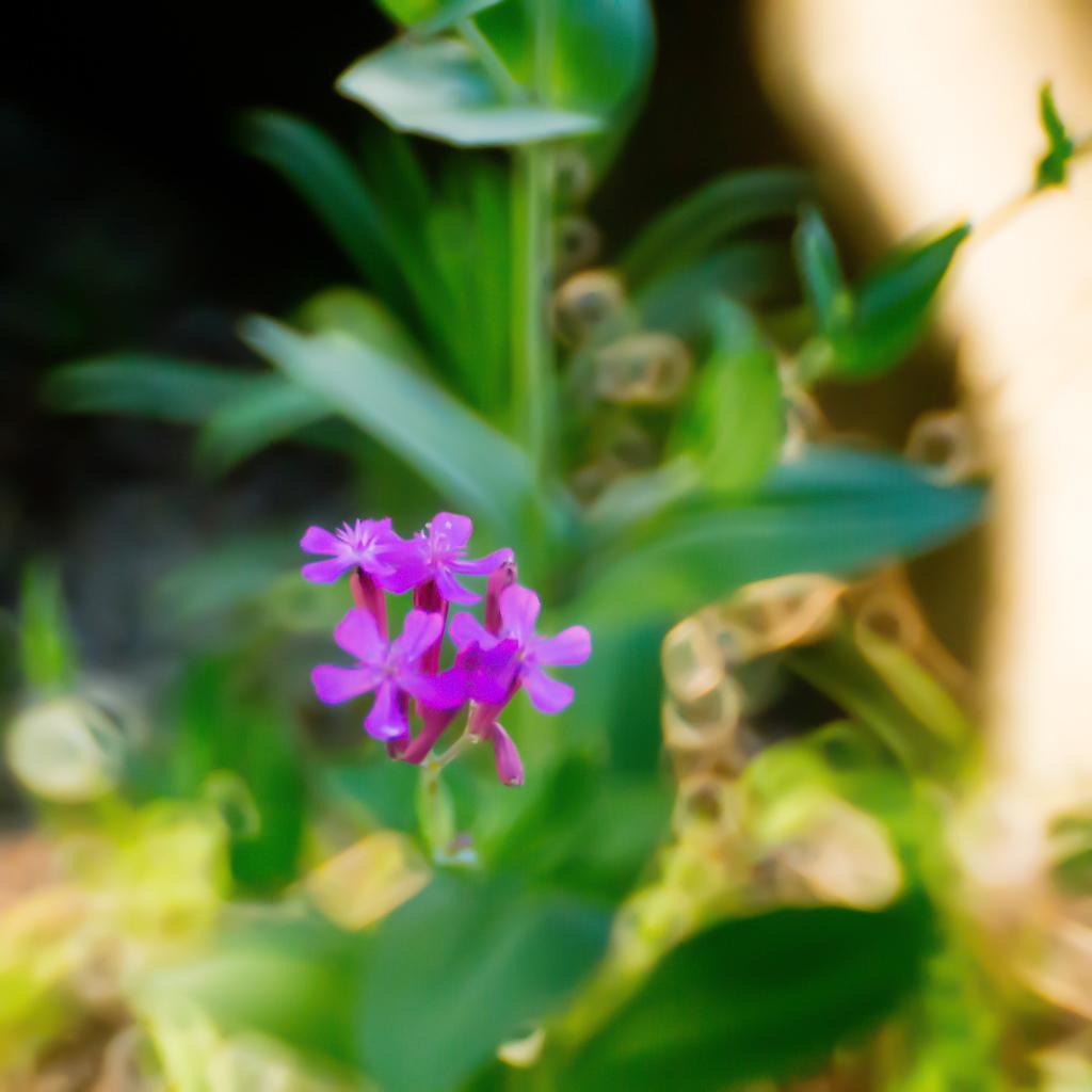 花と健康とケンコーミラー500mm 2