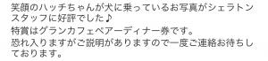 2017年9月6日特賞2
