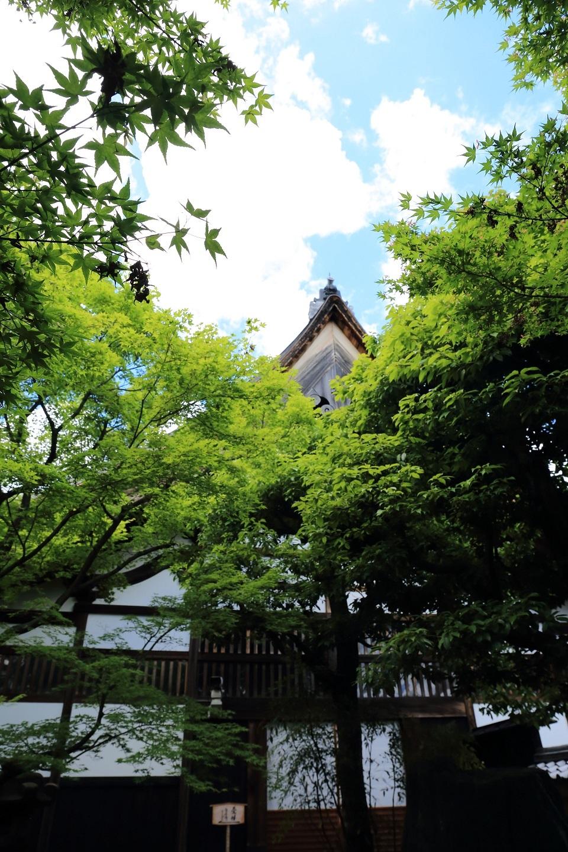 2017 5 27 黄梅院の切り妻屋根 ブログ用.jpg
