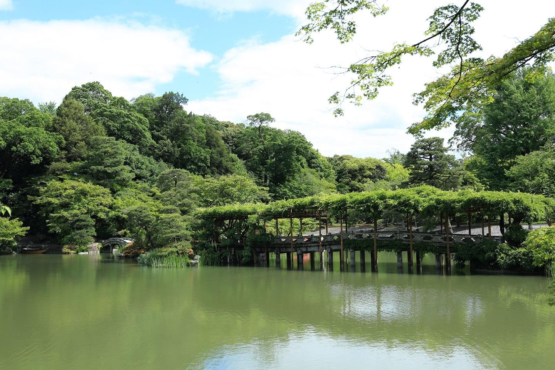 2017 5 27 藤の花の橋 ブログ用.jpg