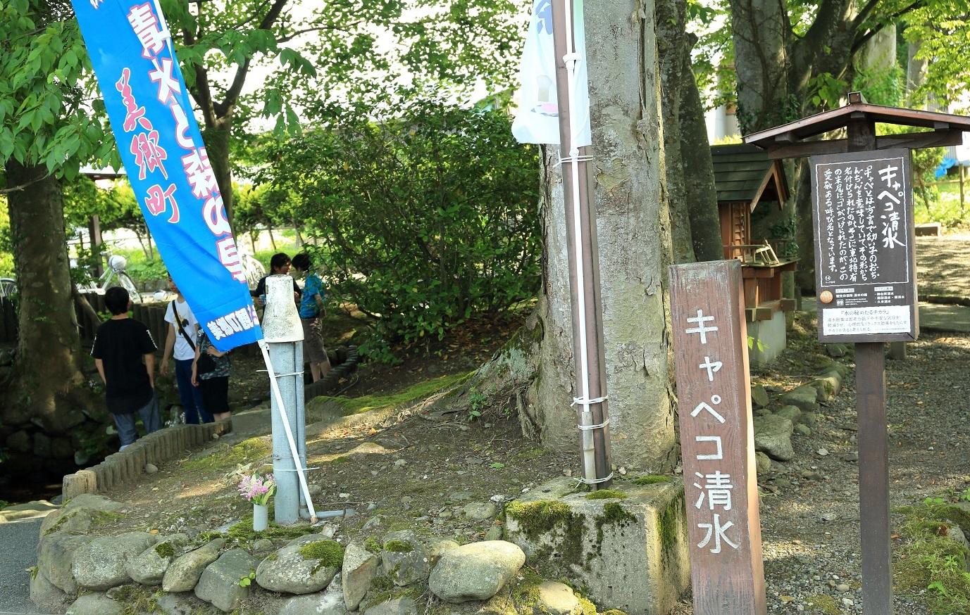 2017 6 24 キャペコ清水 ブログ用.jpg