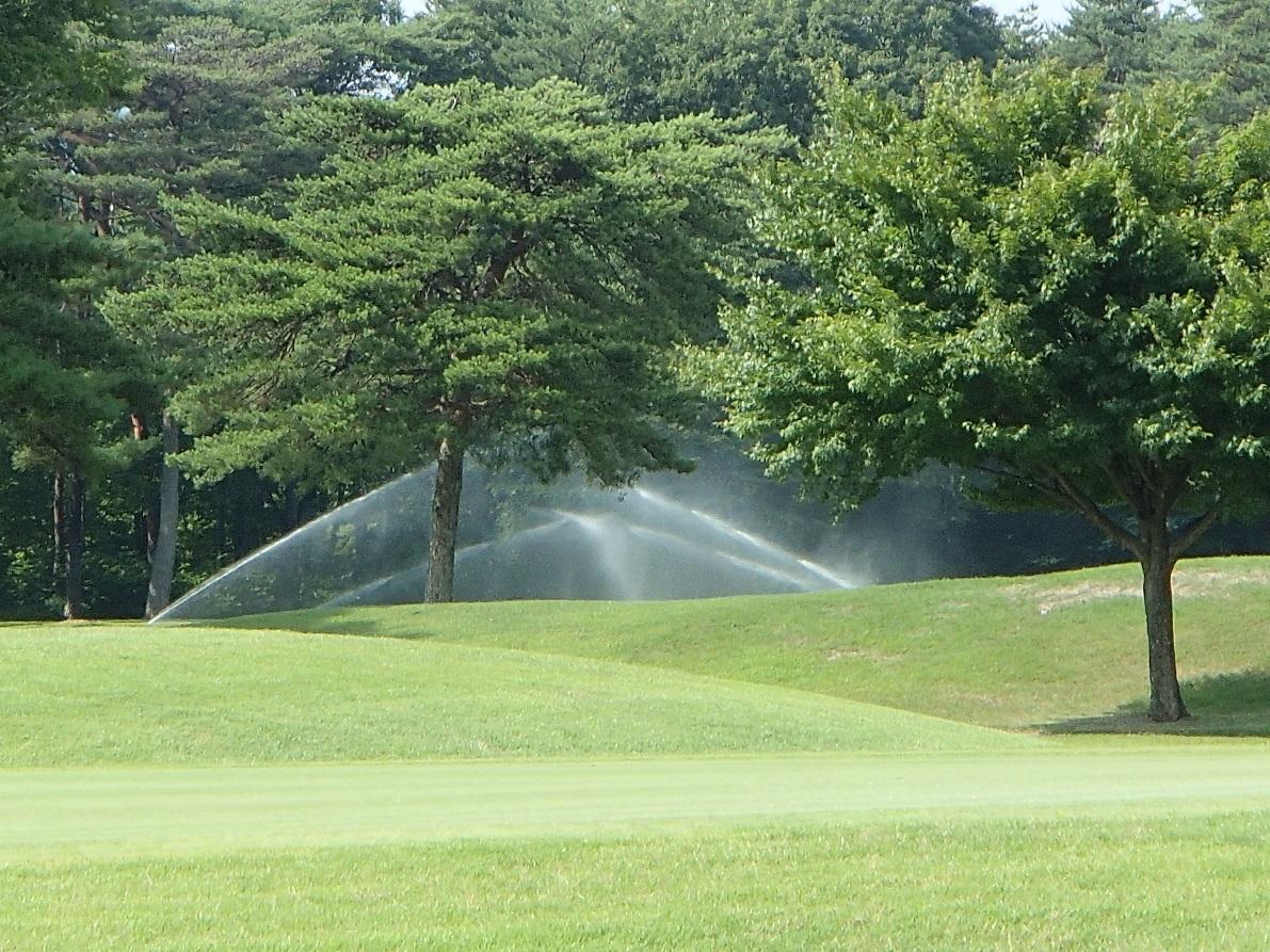 2017 7 11 ゴルフ場も暑いので散水です.jpg