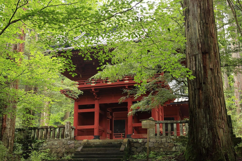 2017 8 6 滝尾神社の楼門 ブログ用.jpg