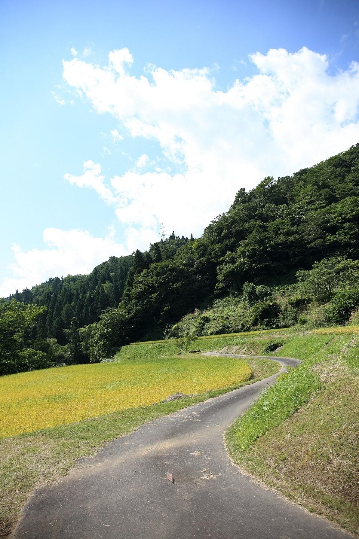 所々は農道も ブログ用.jpg