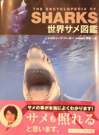 0482_世界サメ図鑑_パーカー