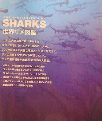 0482_世界サメ図鑑_仲谷先生