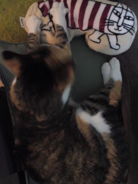 猫クッションふみふみねこ