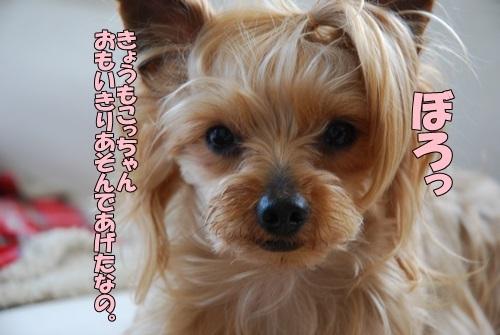 DSC_00110519.jpg