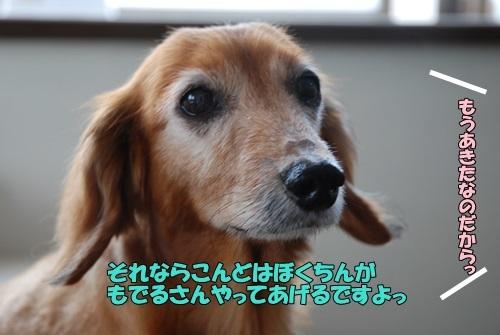 DSC_00170614.jpg
