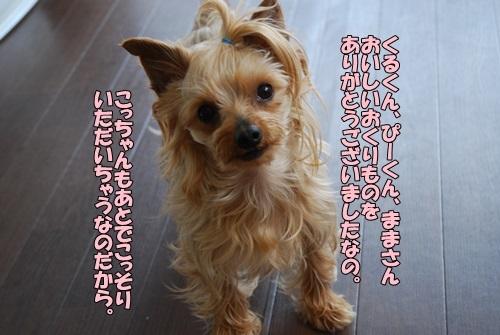 DSC_00380512.jpg