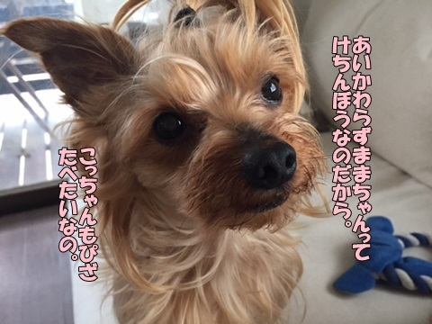 image10602.jpg