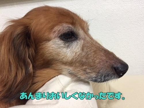 image1073001.jpg