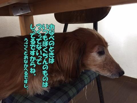 image12051703.jpg