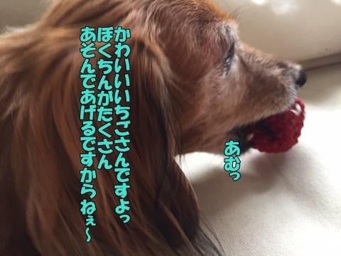 image130524.jpg
