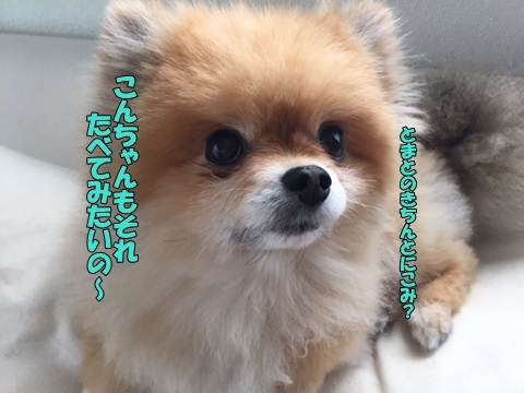 image405170.jpg