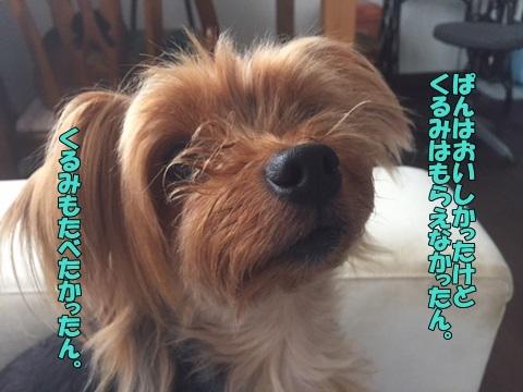 image4083001.jpg