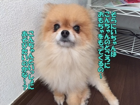 image50609.jpg