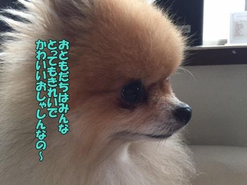 image5082801.jpg