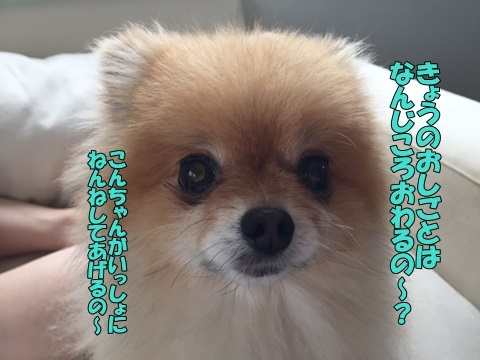image60608.jpg