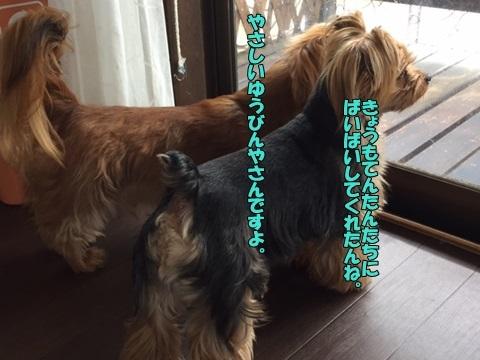image70607.jpg