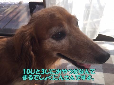 image80523.jpg