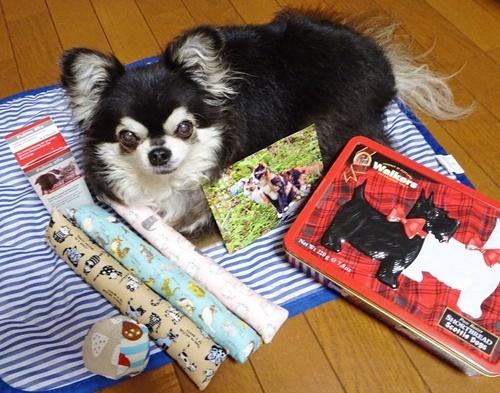 Gaviちゃん&TibiTibiはなびちゃん&おねえさんからプレゼント
