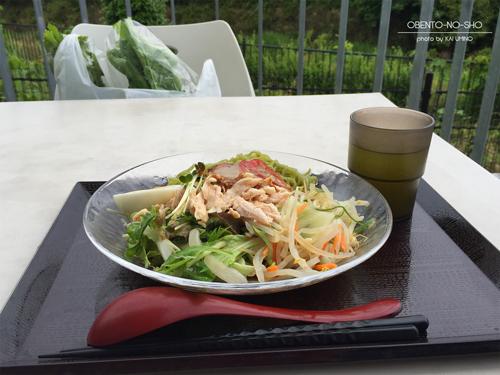 桑の葉冷やしサラダ麺