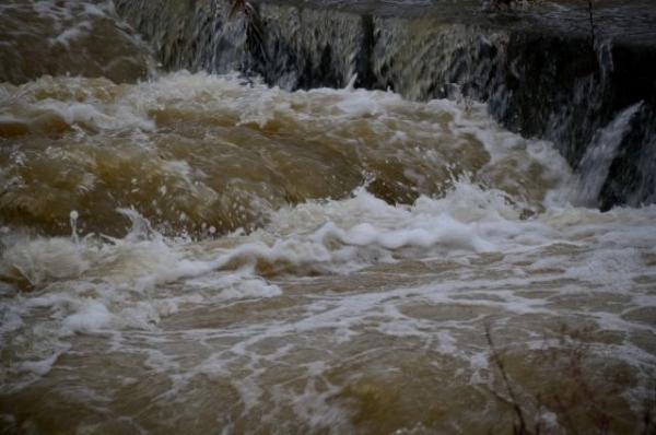 flood6797465.jpg