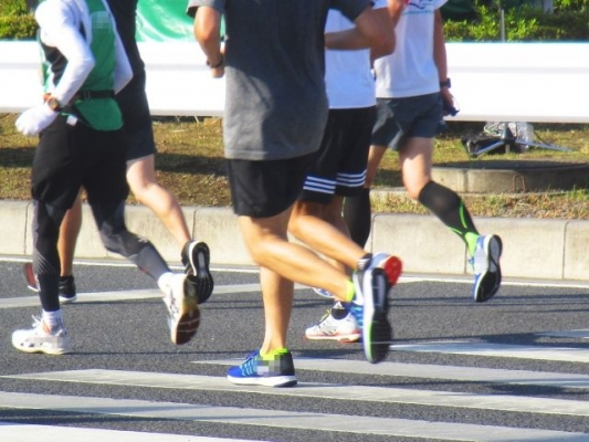 run368769.jpg