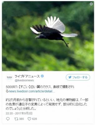 screenshot_2017-09-03_05-57-59.jpg