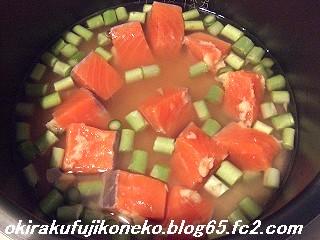 サーモンご飯1