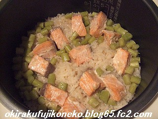 サーモンご飯2