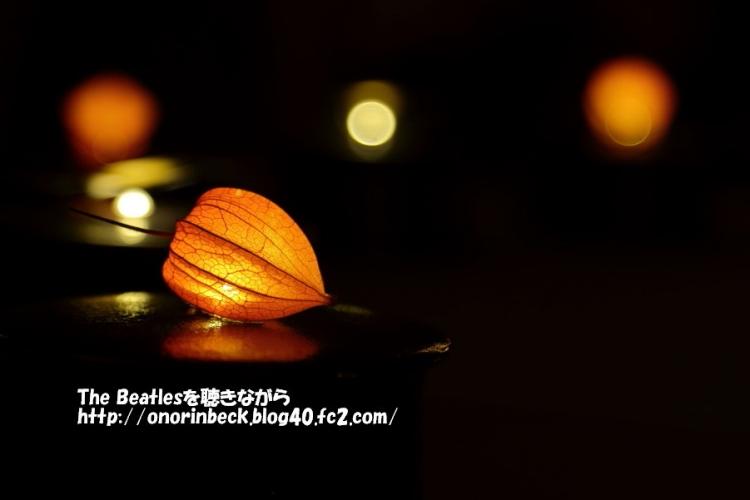 IMG_2017_08_06_9999_134.jpg