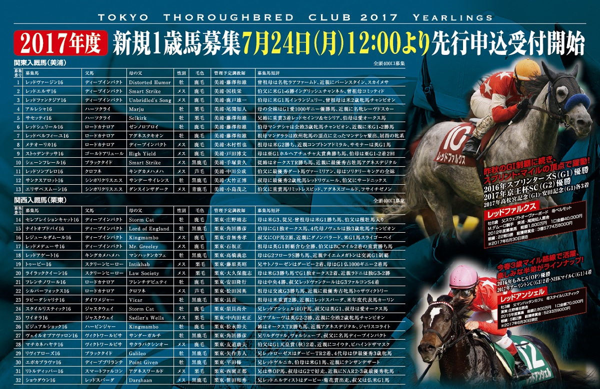東サラ2017年度1歳馬募集