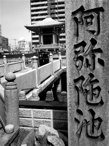 amidaikeNEC_0433.jpg