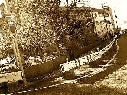 furukawaatoNEC_0771.jpg