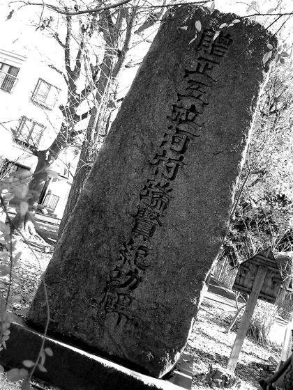 kawamurazuikenkikouhiNEC_0803.jpg
