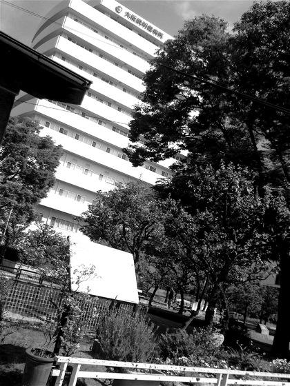 nishikujoparkNEC_0387.jpg