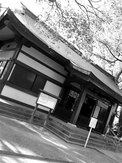 ooyosamijinjaDCIM0243.jpg