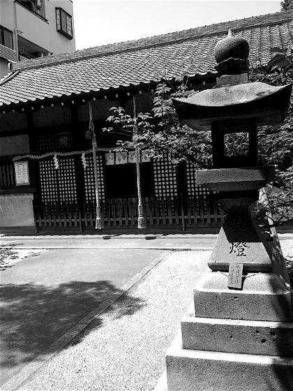 shikanjimasumiyoshiDCIM0177.jpg