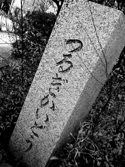 tsurugikaidoDCIM0219.jpg