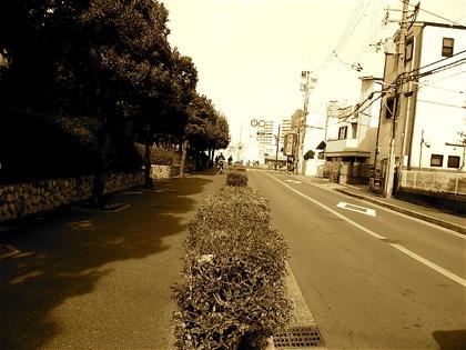 tsurugikaidoDCIM0245.jpg